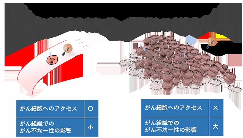 固形がんに対するCAR-T細胞療法の課題
